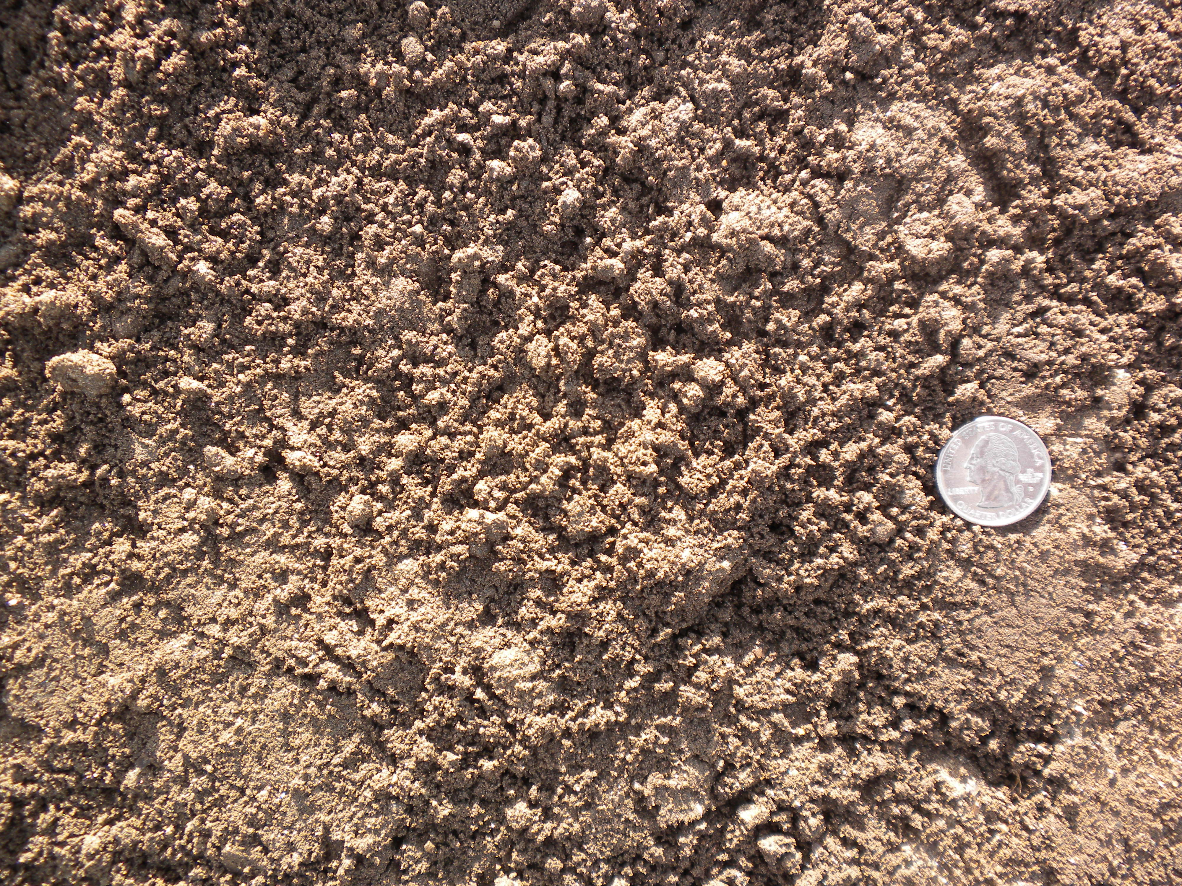What is loam 28 images what is loam definition of for Soil vs dirt