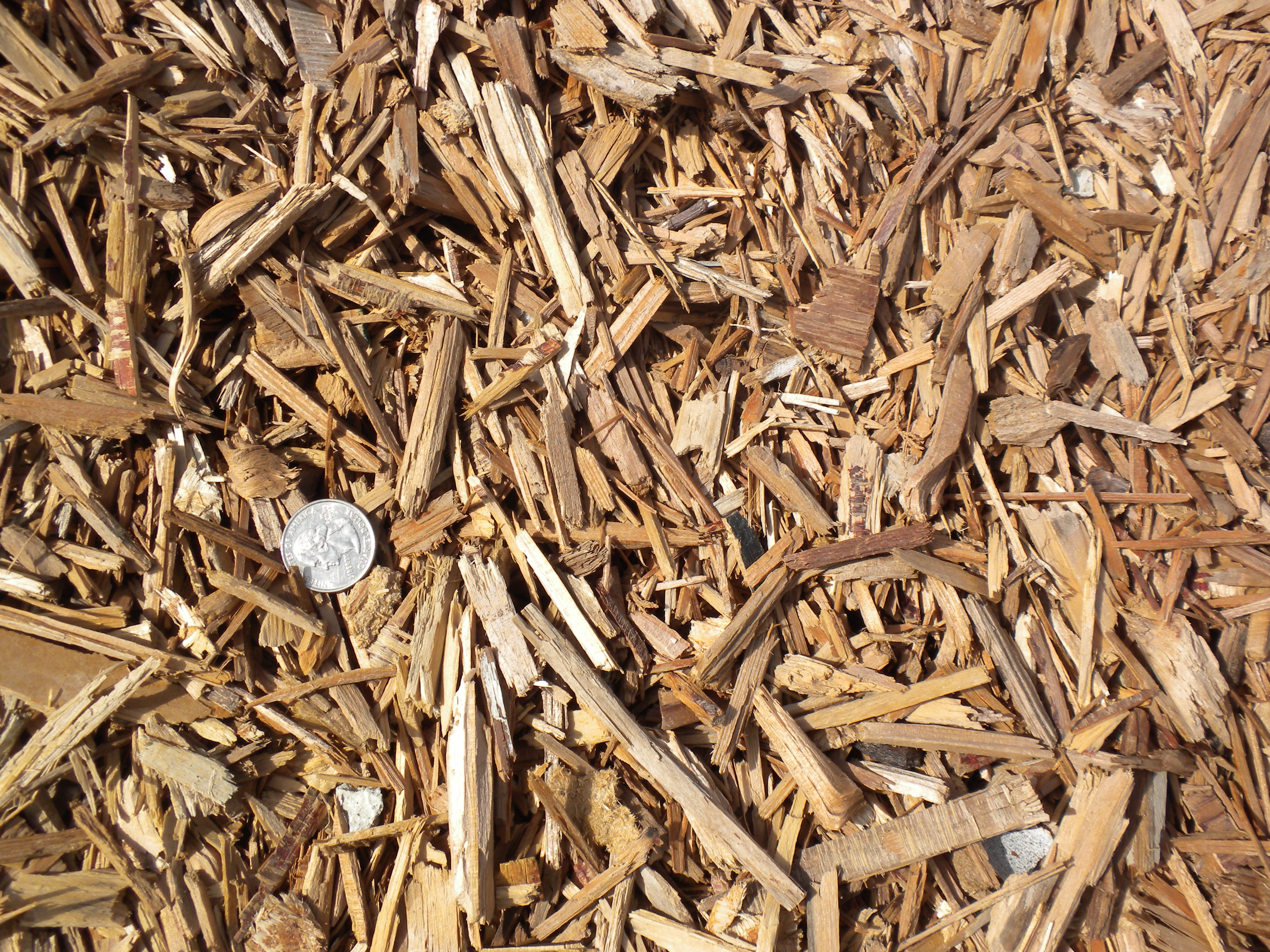 Wood chips mulch